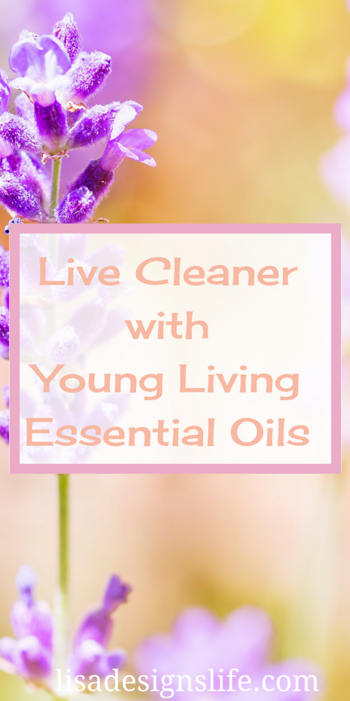 Young Living Essential Oils. Are you ready to start living a healthier, cleaner lifestyle? Stephanie shares part of her wellness journey with us in this month's momprenuer feature. Click to read more.